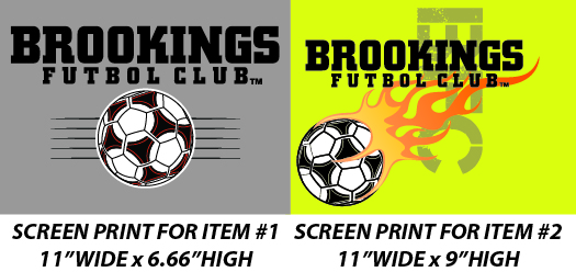 Brookings Futbol Club 2016